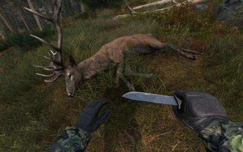 Вот и до Дикой охоты добрались